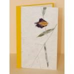 Blahopřání - 38 - žlutobílá obálka s kresbou